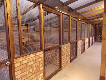 glendee kennel and cattery